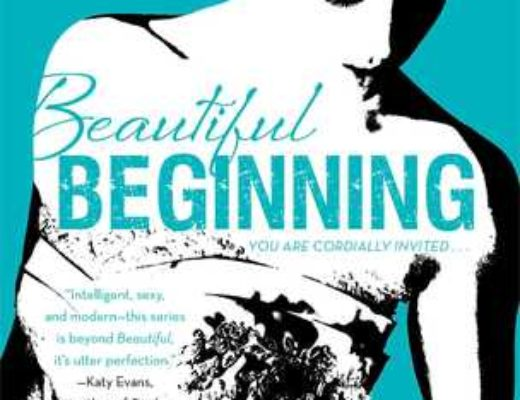 Review of Beautiful Beginning  (Beautiful Bastard #3.5)  by Christina Lauren