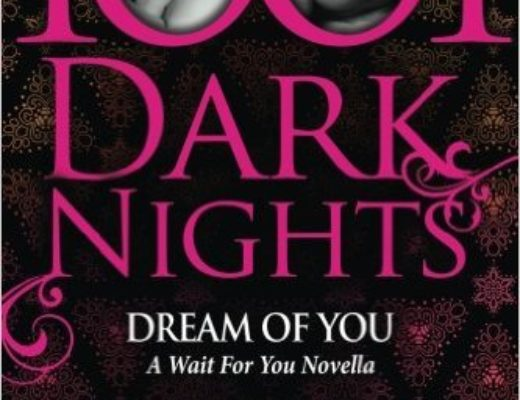 Review of Dream of You: A Wait for You Novella  (Wait for You #4.5)  by J. Lynn