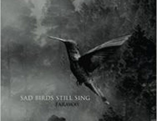Review of Sad Birds Still Sing by Faraway