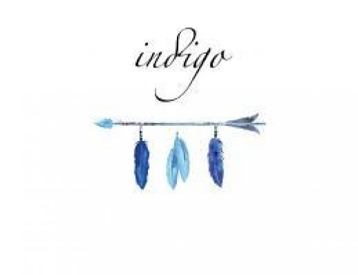 Review of Indigo by F D Soul