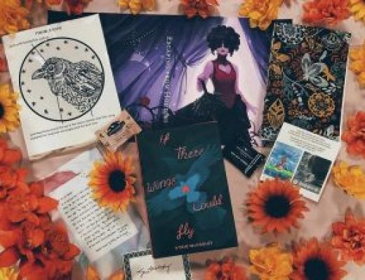 "Bookish Spotlights: Review of Fox & Wit's ""Take Flight""March YA box"